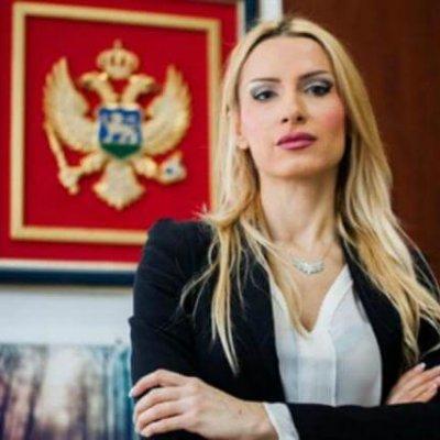 Vojinović: Počiniocu izreći set mjera kako bi vratio životnu sredinu u pređašnje stanje