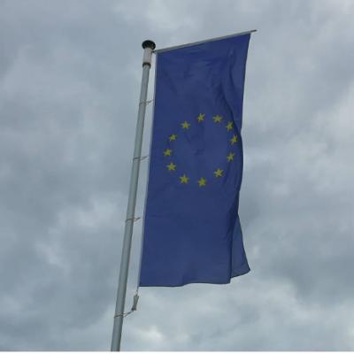 Radulović: Ne očekujmo optimistične izjave iz EU u narednih 7-8 mjeseci