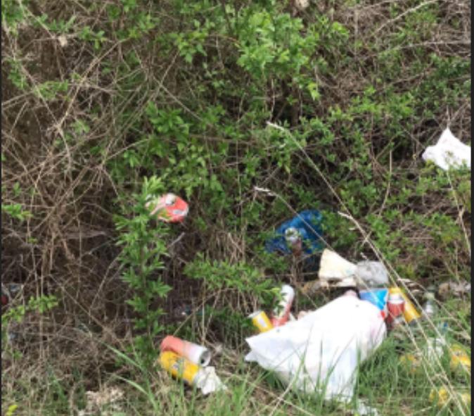 Akcija čišćenja u crnogorskim gradovima za Dan nezavisnosti