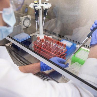 IJZ privatnoj laboratoriji šalje 2.000 uzoraka