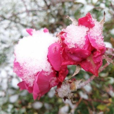 Zabijelio snijeg na sjeveru, temperatura ispod nule