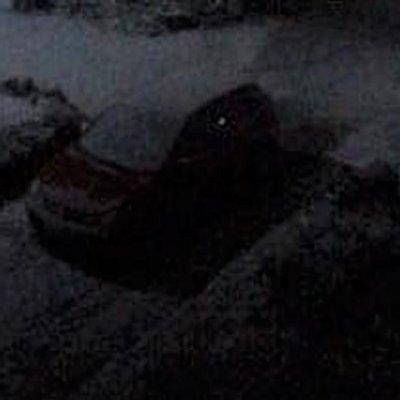 Pao snijeg na Žabljaku