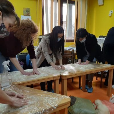 Održana dvodnevna obuka za radno-okupacionu terapiju pustovanja vune