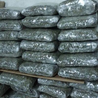 Granična policija spriječila krijumčarenje oko 53 kilograma skanka