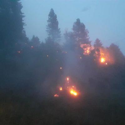 Veliki požar u kanjonu Tare