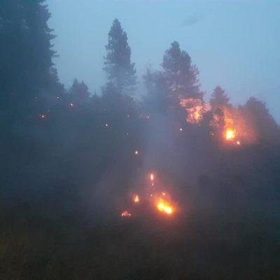 Požar u Brajkovači lokalizovan i stavljen pod kontrolu