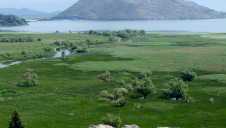 Vlada onemogućena da ima uvid u poslovanje Nacionalnih parkova, opstrukcija direktorke i menadžmenta