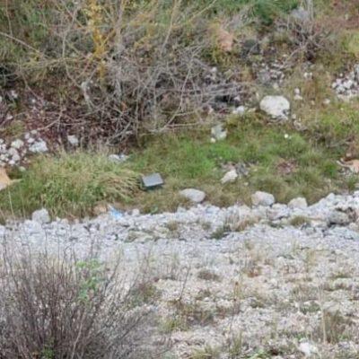 Mitrović: Utvrditi šta ubija životinje na deponiji Jagnjilo