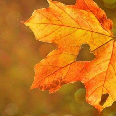 Vremenska prognoza za utorak, 12. oktobar