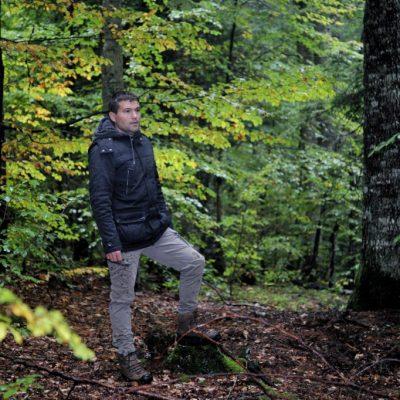 Pejović: Analiza gazdovanja šumama pokazuje zabrinjavajuće loše rezultate